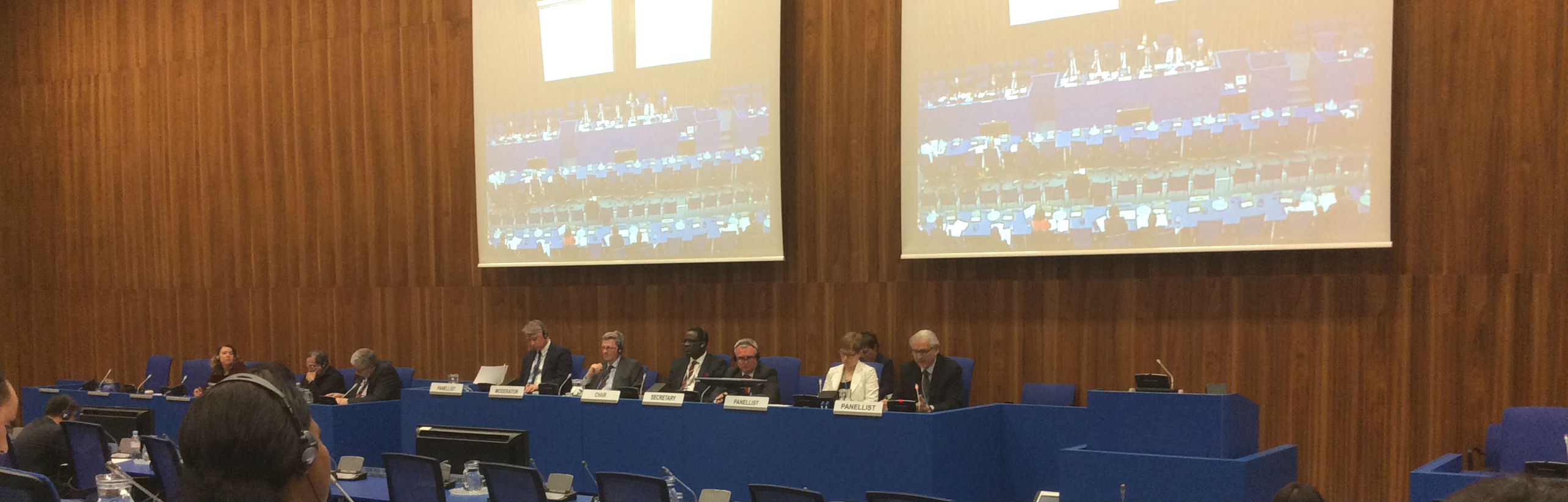 workshop of the United Nations Crime Prevention and Criminal Justice Programme Network of Institutes