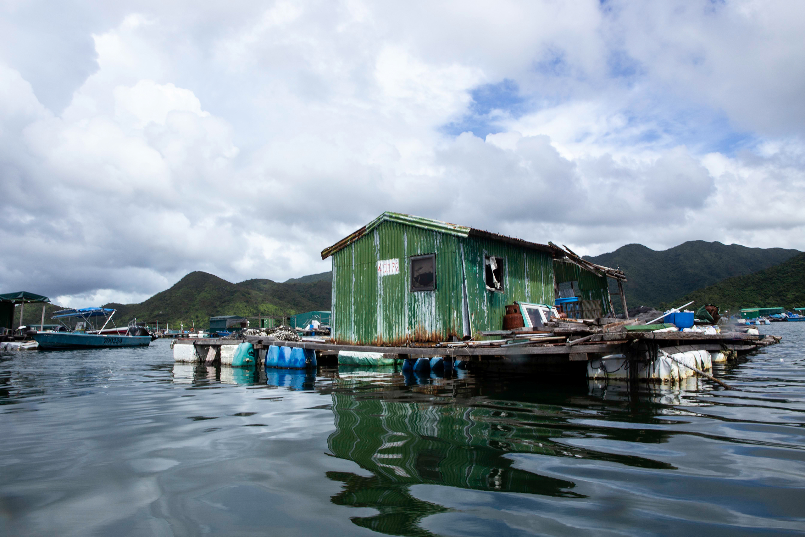 A floating fish farm in Three Fathoms Cove, home to one of Hong Kong's few remaining areas of mangroves. If practised sustainably, aquaculture can benefit from the ecosystem services mangroves provide. A richly biodiverse habitat, these intertidal forests offer a safe haven for fish to breed and raise their young, and also help clean the water of pollutants. (Image: Katherine Cheng / China Dialogue)
